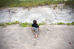Boy Climbing Up At The Beach Stock Photography - Image: 15164692