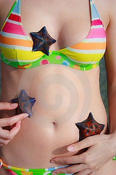 Tudo Nas Estrelas Fotos de Stock Royalty Free - Imagem: 15165198