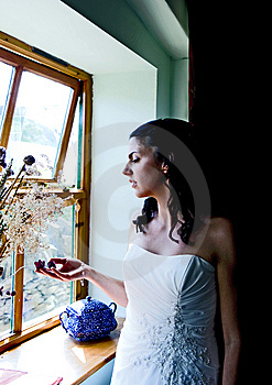 Bride Enjoying A Quiet Moment Stock Photography - Image: 15173432