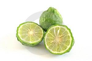 Kaffir Limes Stock Photo - Image: 15174400