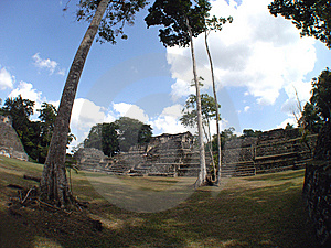 Caracol Archeological Site Stock Image - Image: 15178151