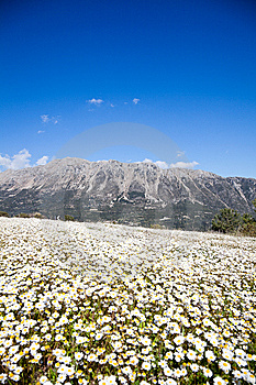 Mountains On Lefkada Island Stock Photo - Image: 15181830