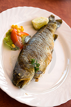 Grilled Trout With Cream Butter Royalty Free Stock Photo - Image: 15184805
