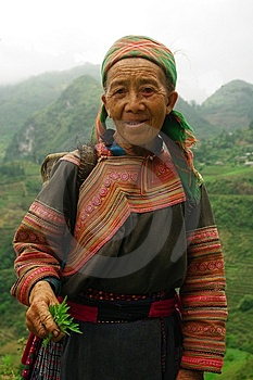 Grandmother Hmong Flowered Stock Photo - Image: 15193530