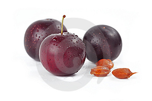 Plums Stock Photography - Image: 15198372