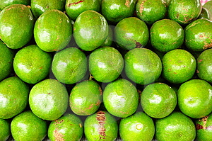 Green Avocado In Thailand Royalty Free Stock Images - Image: 15198589