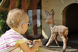 Baby And Roe Deer Royalty Free Stock Photography - Image: 15199387