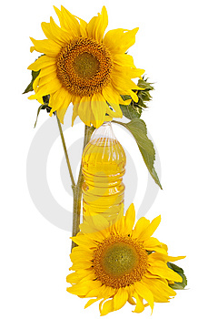 Sunflower Oil And Sunflower Stock Images - Image: 15205284