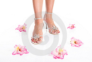 Woman Feet In Sandals And Flowers Stock Photos - Image: 15209723