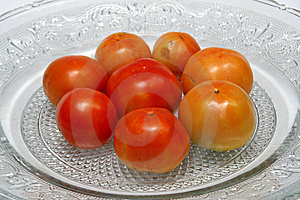 Juicy Tomatoes Stock Images - Image: 15216184