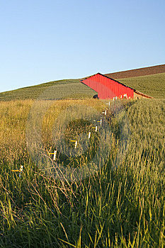 Fence Leads To A Red Barn. Stock Photos - Image: 15217693