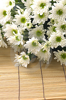 Daisy Bouquet Royalty Free Stock Images - Image: 15219329