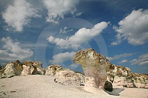 Stone Mushrooms Stock Photography - Image: 15223792