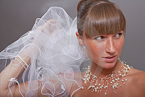Beautiful Bride With Veil Royalty Free Stock Image - Image: 15224376