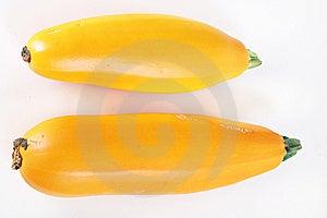 Heirloom Orange Zucchini Royalty Free Stock Image - Image: 15225876