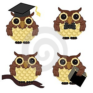 Four Owls On White Background Stock Photo - Image: 15228310