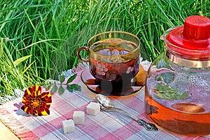 Tea Drinking Royalty Free Stock Photos - Image: 15228748