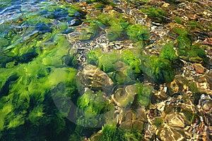 Underwater Rocks Royalty Free Stock Photo - Image: 15240025