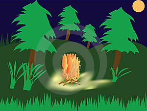 Campfire In Wood Royalty Free Stock Image - Image: 15252986