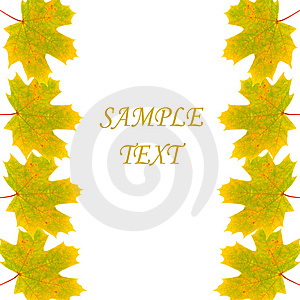 Frame Of Autumn Maple Leaves Royalty Free Stock Photo - Image: 15263015