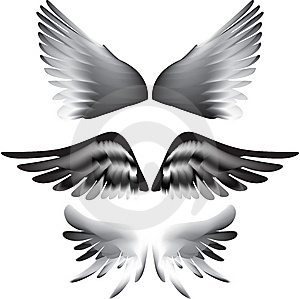 Wings Silhouette  Stock Image - Image: 15264101