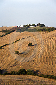 Fields Grain With Bales Royalty Free Stock Photo - Image: 15271445