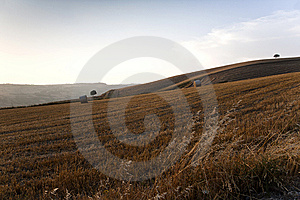 Fields Grain With Bales Stock Photography - Image: 15274522