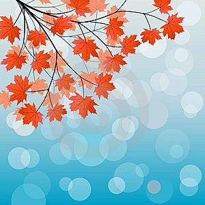 Autumn Background Stock Image - Image: 15291561