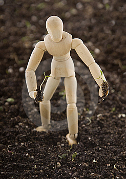 Mannequin Planting Seedling In Soil Royalty Free Stock Photo - Image: 15298325