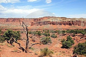 Capital Reef National Park Royalty Free Stock Images - Image: 1533209