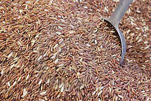 Thailand Brown Rice Stock Photo - Image: 15315240