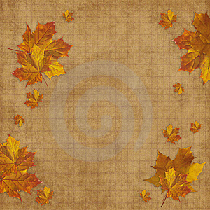 Card For The Holiday  With Leave And Flowers Royalty Free Stock Photo - Image: 15322445