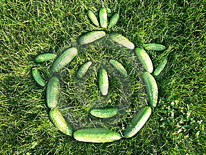 Cucumbers  Stock Images - Image: 15327004