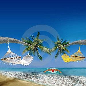 Exotic Holiday Destination Stock Photography - Image: 15328722