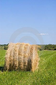 Haystacks Harvest Against The Skies Stock Image - Image: 15334231