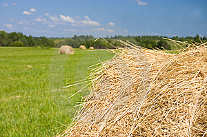 Haystacks Harvest Against The Skies Royalty Free Stock Photography - Image: 15334277
