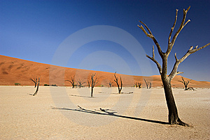 Desolate Desert Stock Images - Image: 15342234