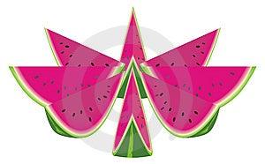 Watermelon. Stock Image - Image: 15345461