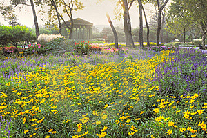 Jardin myst rieux avec le paysage fantastique image stock for Jardin fantastique