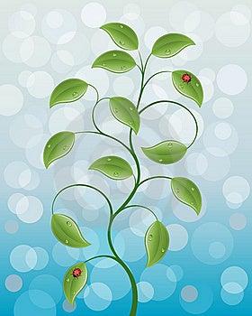 Floral Background Stock Image - Image: 15366511