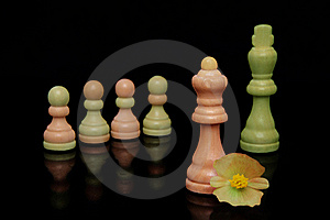 Chess Pieces Stock Image - Image: 15367121