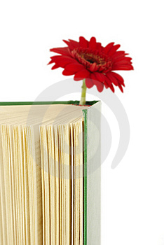 Book With A Red Flower. Royalty Free Stock Photo - Image: 15389975