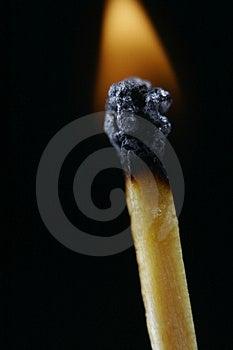Match head on fire Stock Image