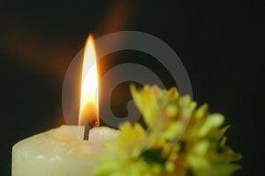 The tea candle Stock Photos