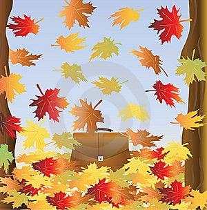 Portfolio Among Falling Foliage Royalty Free Stock Photos - Image: 15402168