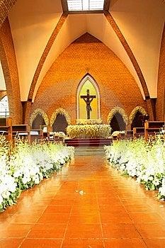 God And  White Flower Stock Photos - Image: 15406233