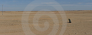 Man Pray In Desert Stock Photography - Image: 15420722
