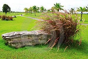Natural Park Stock Photos - Image: 15422963