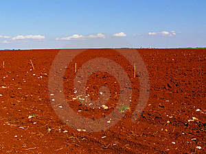 Red Fields Countryside Stock Images - Image: 15438394