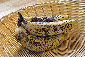 Ripe Bananas Royalty Free Stock Photos - Image: 15446538